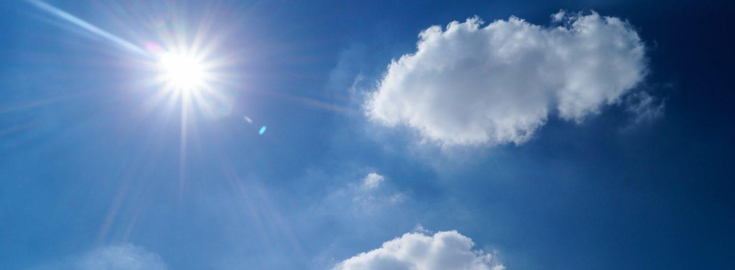 Vitamin D Das Sonnenvitamin Mamalogik